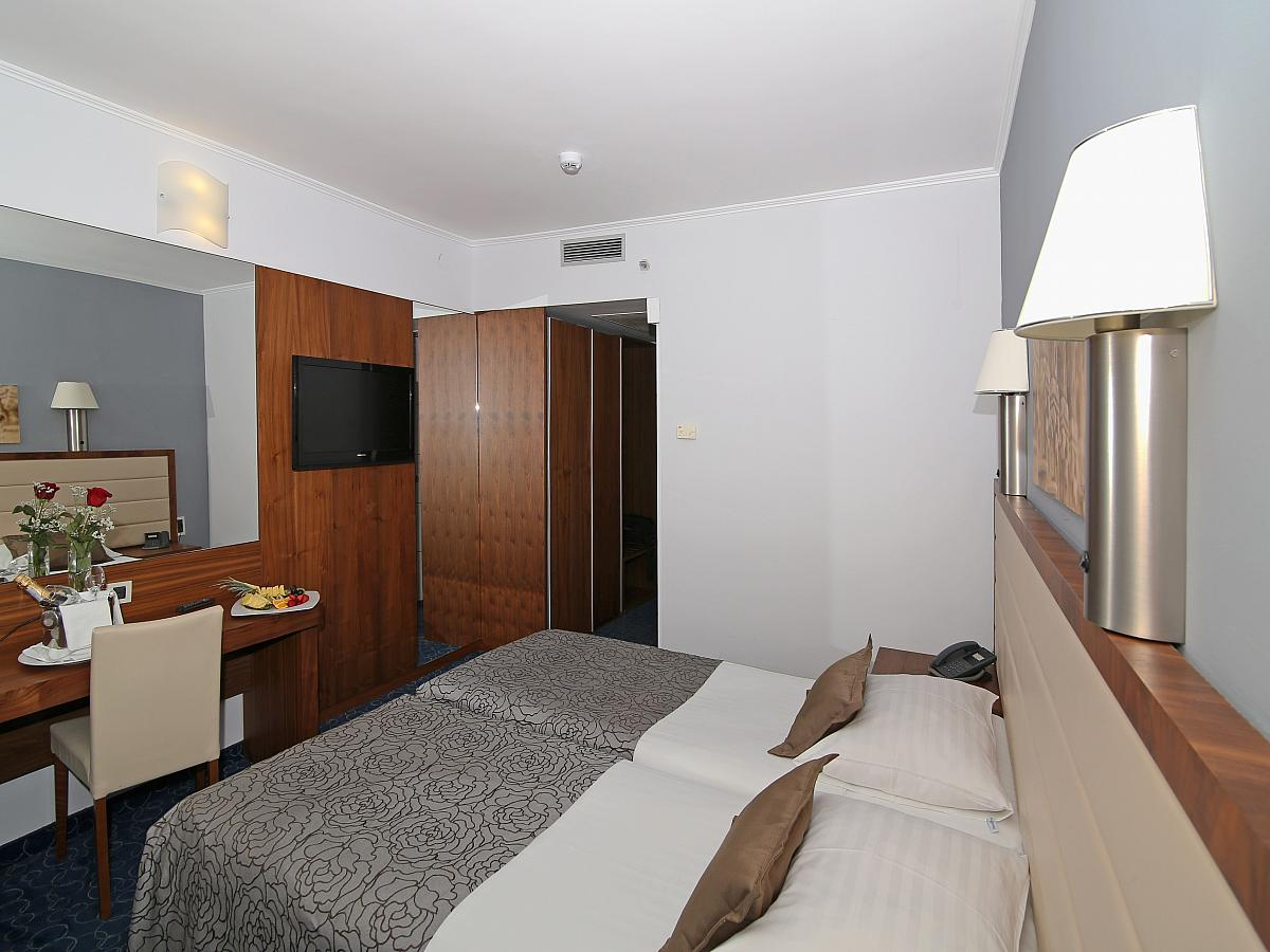 Double room classic single use with half board