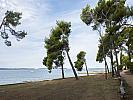 Camping  PINETA (mh) -  Fažana (Fažana)