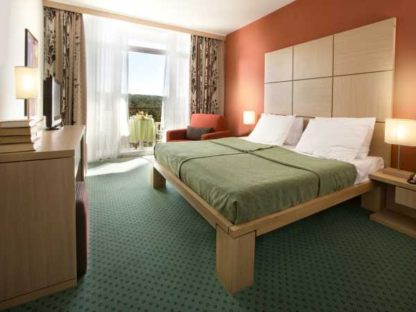 Single room standard park side with halfboard