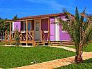 Camping  AMINESS SIRENA CAMPSITE HOLIDAY HOMES -  Novigrad (Novigrad)
