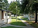 Apartment  LAGUNA PARK -  Poreč (Poreč)