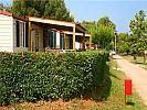 Mobile home  LANTERNA (mh) -  Poreč (Novigrad)