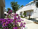 Tourist settlement  ZATON HOLIDAY RESORT 4* -  Zadar (Zadar)