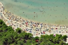 Tourist settlement  ZATON (adria) -  Zadar (Zadar)